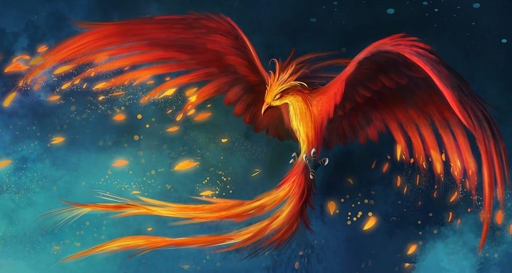 Phoenix Tattoo for men