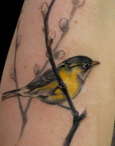 bird-20