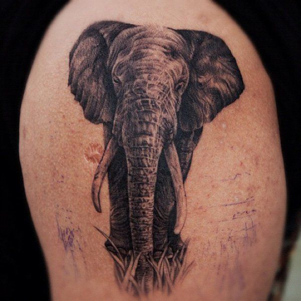 Elephant Tattoos For Men Ideas For Guys And Image Gallery