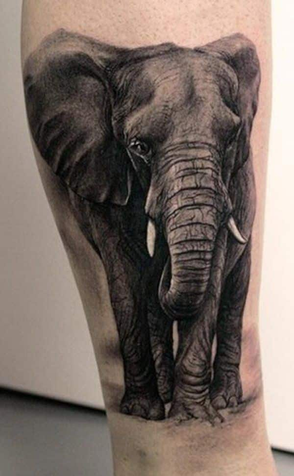 elephant tattoos for men ideas for guys and image gallery. Black Bedroom Furniture Sets. Home Design Ideas