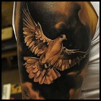Dove Tattoo Ideas for Guys