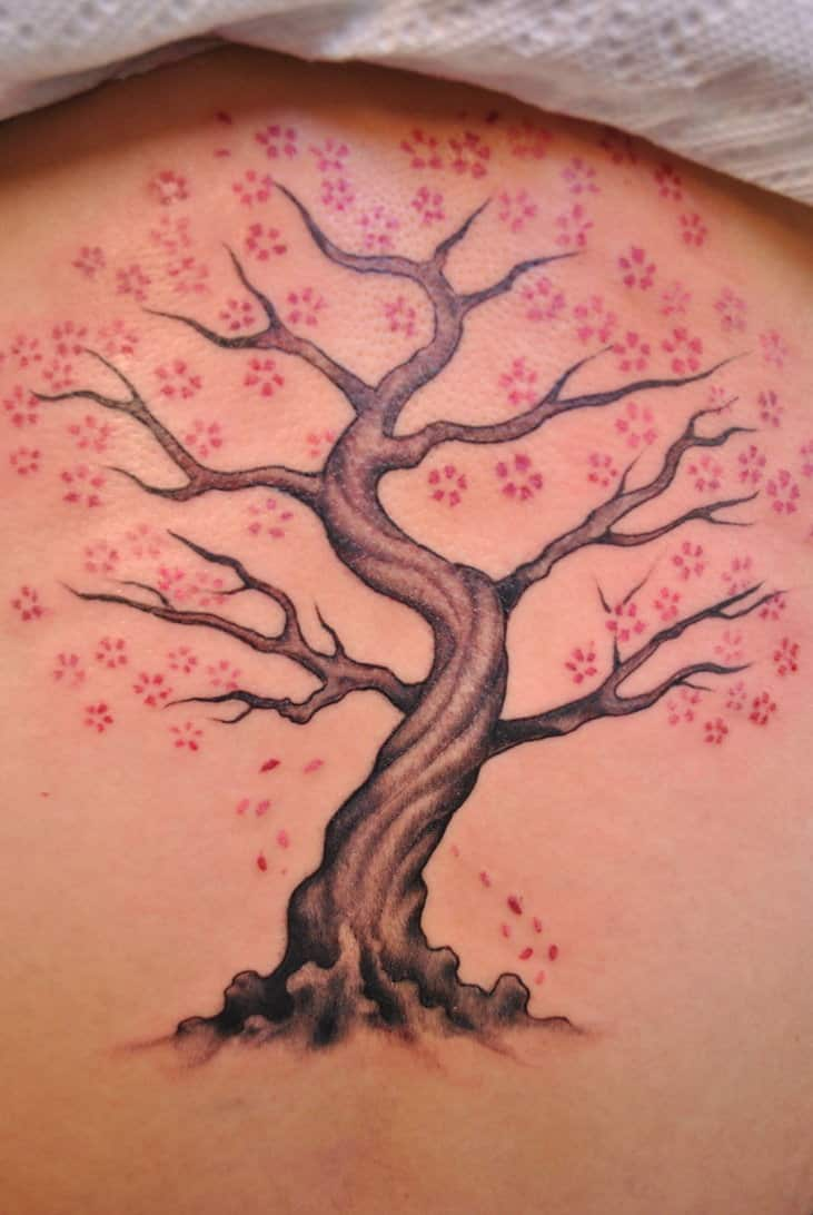 Cherry blossom tattoos for men ideas and inspiration for for Chinese cherry blossom tattoo