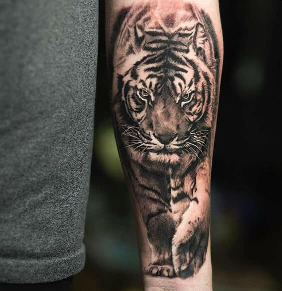 tiger tattoos for men ideas and designs for guys. Black Bedroom Furniture Sets. Home Design Ideas